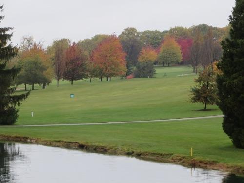 Bartlett Hills Pond View